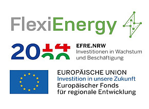 Sponsoring Project FlexiEnergy